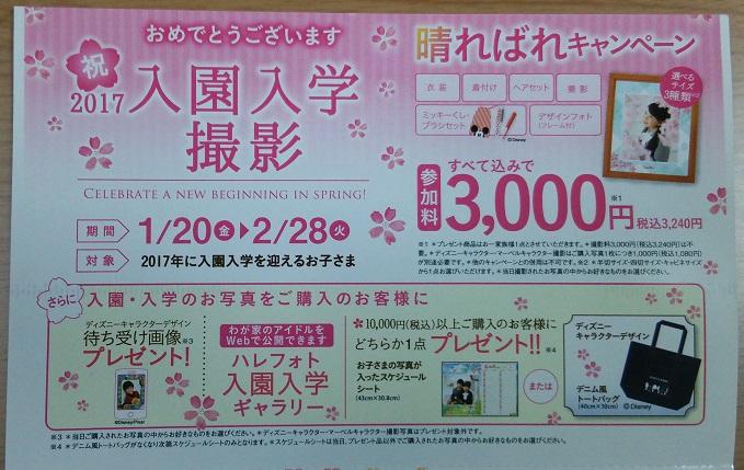 スタジオアリス 入園入学キャンペーン ダイレクトメール